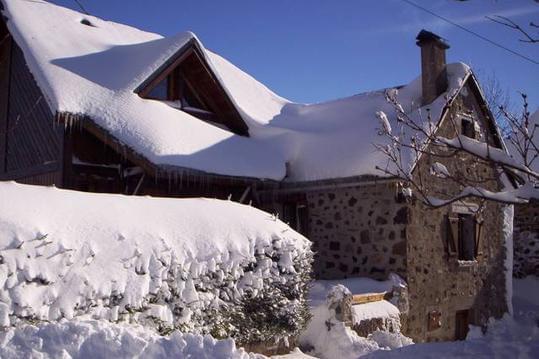 """Chalet """"l'Eterlou""""  station de ski du Lioran à 5mn"""