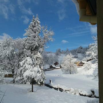 Location Elfe au pied des Vosges