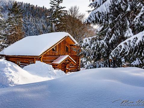 Magnifique Chalet rondin à La Bresse, tout confort